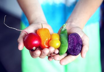 hands holding colorful veggies